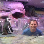 Pascal bei den Pinguinen...