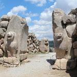 Hattusa, porta dei leoni