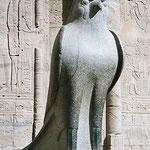 Tempio di Edfu, dio Horus