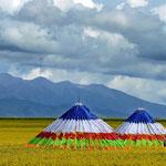 Tende nomadi altopiano Qinghai