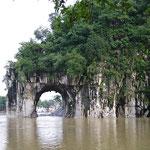 Guilin, Proboscide elefante