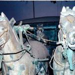 xian, Terracotta horses
