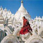 Bimbo monaco
