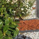 Création de parterre de fleurs 2
