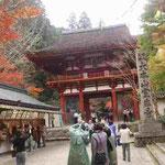 室生寺の入口にて。紅葉が何とも美しい(11月15日)