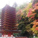談山神社 三重の塔。紅葉が一際美しい