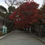 観音堂への参道
