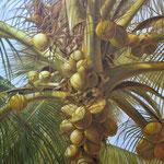 MAMBO. Óleo sobre tela, 150 x 150 cm. Jorge Luna.