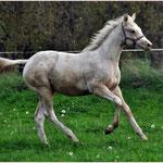 """""""Oshanees Anoki"""", knapp 6 Monate alt, schmutzig, aber glücklich"""