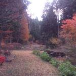 大正村 明智の森