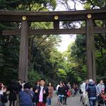Tori am Meiji-Schrein