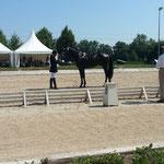 Surreal beim Reitpferdechampionat in Nördlingen