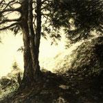Bergwald // 107 x 78cm // Privatbesitz