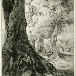 Olivenbaum II // 16,5 x 25cm // Serie ausverkauft