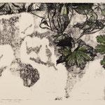 BLATTWERK I // Monotypie Studie // Druckplatte 25 x 44cm // mit Passepartout 50 x 70cm // erhältlich in der Galerie art+form Dresden
