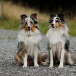Gipsy Kiwi und Mama Belle