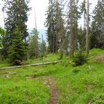 Salita all'Alp de Martum