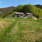 Pian della Crosa 1370 m