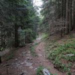 Sentiero Prepiantò - Alp de Palazi