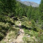 Ritorniamo all'Alp de Cascinarsa