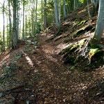 Sentiero per l'Alpe di Giumello