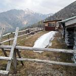 Alpe Ladrim 1524 m