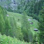 Alpe della Bolla 1650 m