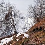 Sentiero Cavallascio - Alpe di Naccio