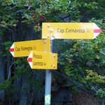 Alla deviazione prendiamo il ponte nuovo per la Capanna Cornavòsa