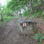 Sentiero per l'Alpe Croveggia