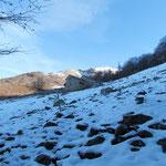 Alpe Cedullo 1287 m