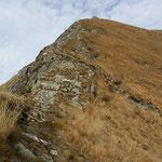 La discesa per l'Alpe di Bietri