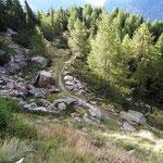 Sentiero Sompréi - Alpe di Chiéra