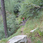Sentiero Alpe Motarina - Alpe Legrina