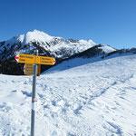 Alpe di Gesero 1875 m