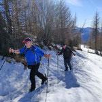 Salita all'Alpe Morisciolo