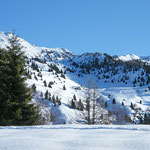 Alpe Croveggia 1547 m