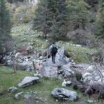 Sentiero Alp de Val d'Arbola - Alp de Poz