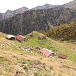 Alp d'Albion 1890 m