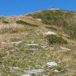 Rifugio Al Legn 1785 m