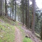 Sentiero per Soazza