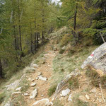 Sentiero Corte di Mezzo - Vacarisc di Fuori