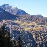Alp de Bon da Campel Alt