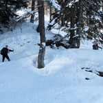 Sentiero Scontra - Alpe Cadonighino