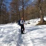 Sentiero Pian Secco - Alpe Pesced