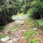 Salita all'Alpe di Prou
