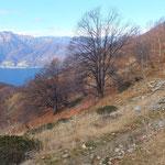 Sentiero sotto il Monte Gambarogno