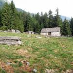 Alp de Palazi 1572 m