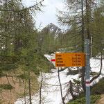 Passo della Bassa 1804 m e Pizzo Peloso