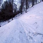 Proseguiamo per l'Alpe Cadonigo